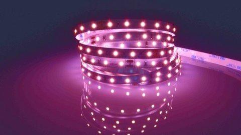 Grupo Empresarial PLAZALED - TIRA DE LED PARA CARNE DE CERDO - PLAZALED rótulos led electrónicos, pantallas led electrónicas